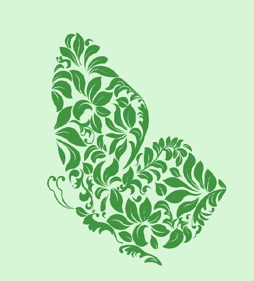 Papillon vert 2