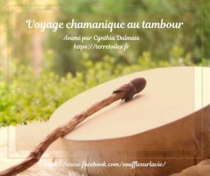 Voyage chamanique